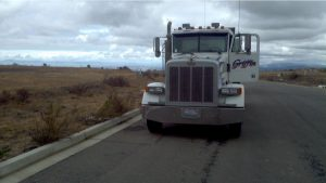 Trucking and Hauling in Hayward Hills